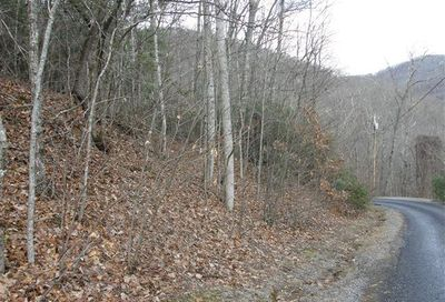 9999 Dogwood Forest Road Fairview NC 28730