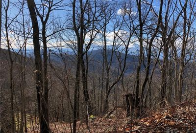 Tbd Hickory Forest Road Fairview NC 28730