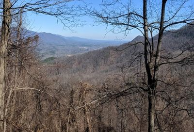 Tbd N Haven Drive Black Mountain NC 28711