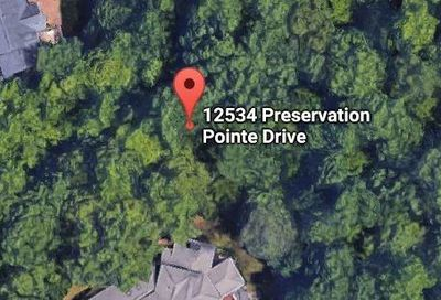 12534 Preservation Pointe Drive Charlotte NC 28216