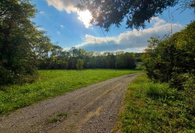 Puncheon Camp Rd Bell Buckle TN 37020