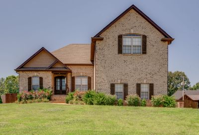101 Crystal Ct White House TN 37188