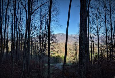 Lot #17 S Lindon Cove Road Candler NC 28715