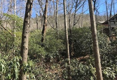 Tbd Kentucky Road Montreat NC 28757