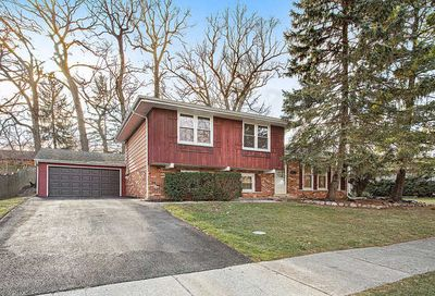 10065 Holly Court Orland Park IL 60462