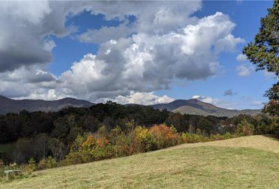 Lot #5 S Lindon Cove Road Candler NC 28715