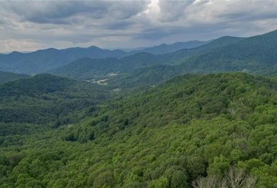 1300 Elk Mountain Scenic Highway Asheville NC 28804