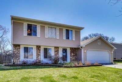843 Summerfield Drive Roselle IL 60172