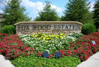 1125 Fox Wood Lane Downers Grove IL 60516