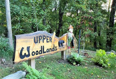 00 Mountain Road Maggie Valley NC 28751