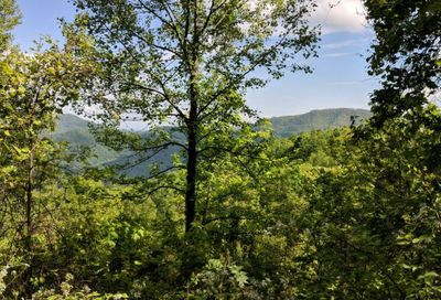Lot T-78 1591 Creston Drive Black Mountain NC 28711