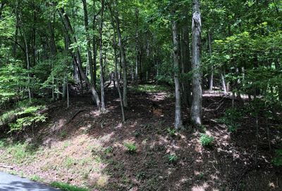 Lot 166 Walnut Drive Mills River NC 28759