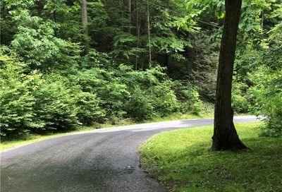 17 Acres Chestnut Forest Road Fairview NC 28730