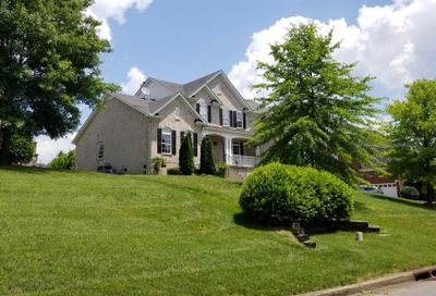 9656 Radiant Jewel Ct Brentwood TN 37027