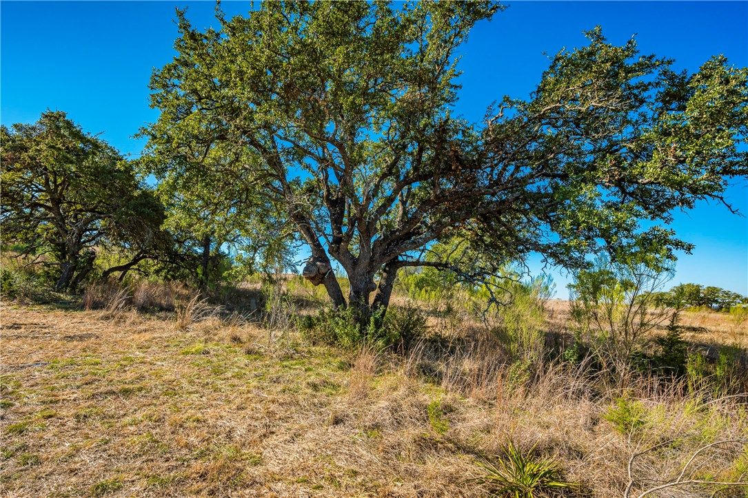 Lot 152 Cedar Mountain Drive