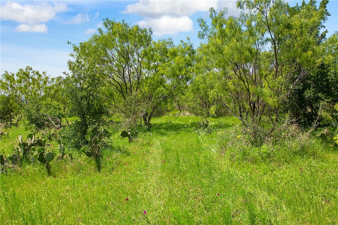 Tbd Lot 6 State Highway 29