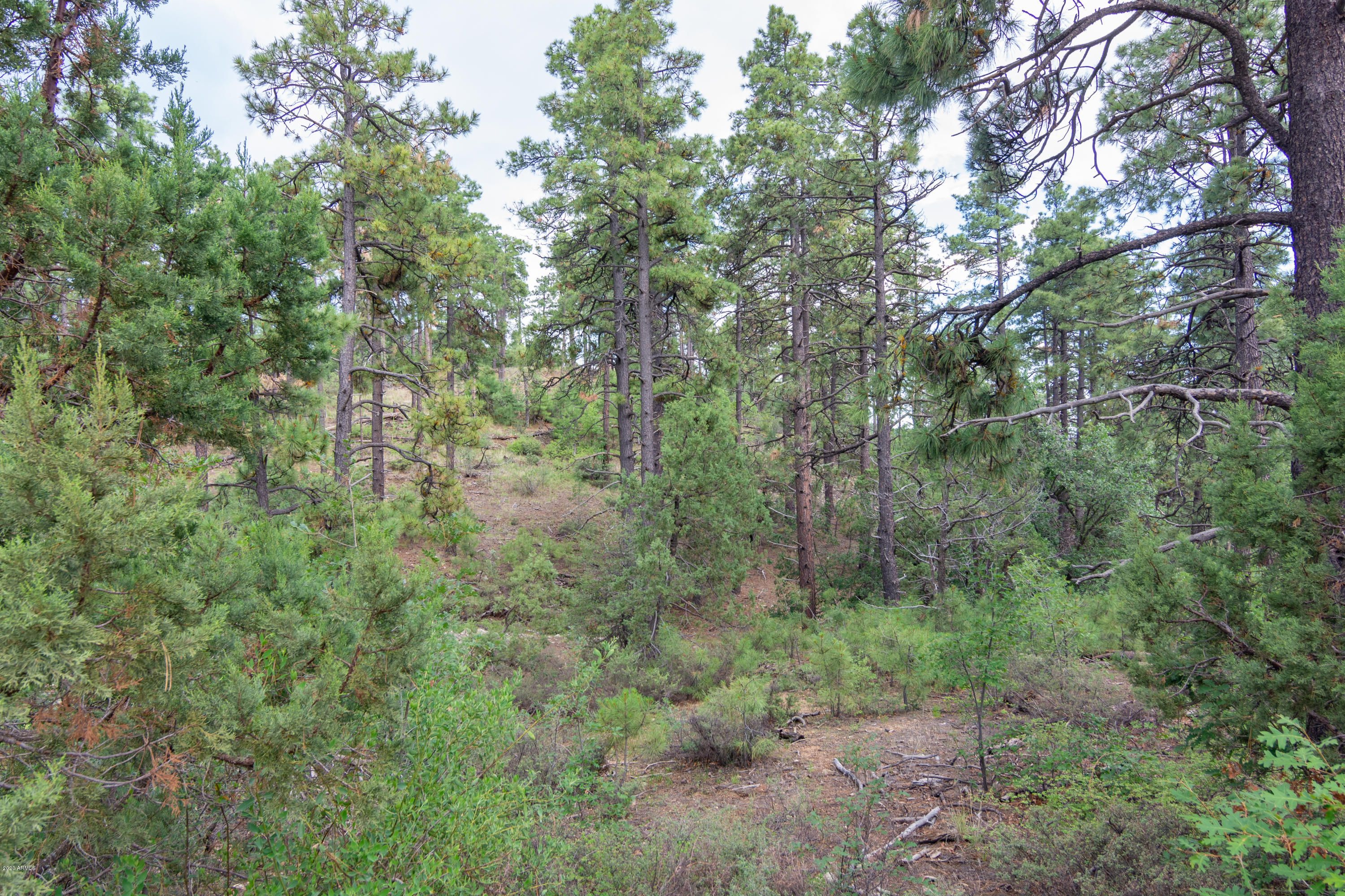 4702 W Vulture Bend (Approx) Drive