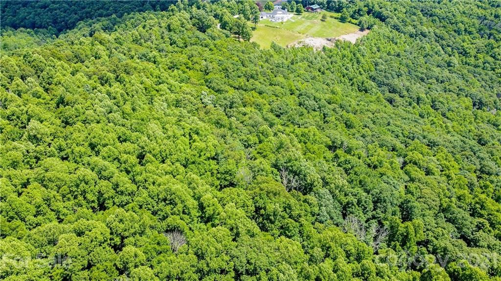 4.78 Acres Cabbage Patch Road