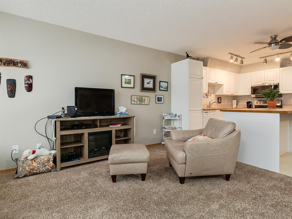 11 Somervale View