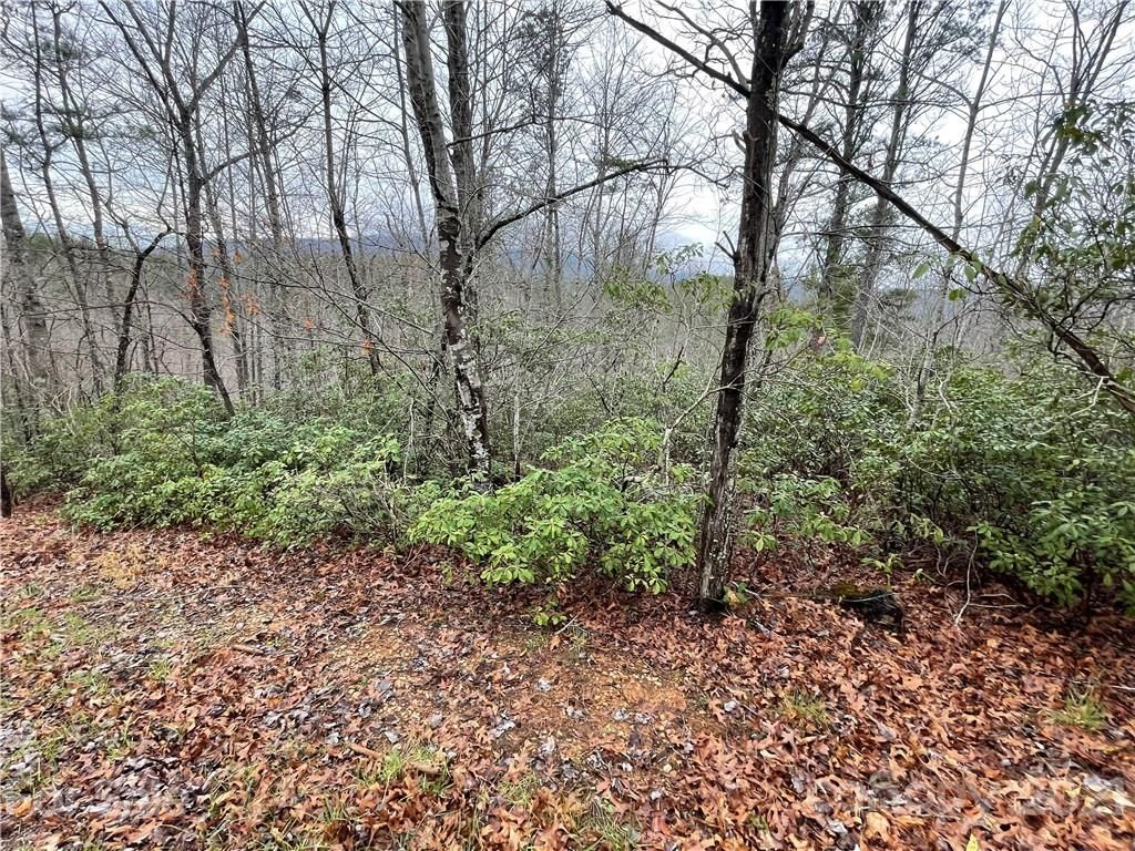 Lot# 55 Bear Cliff Circle