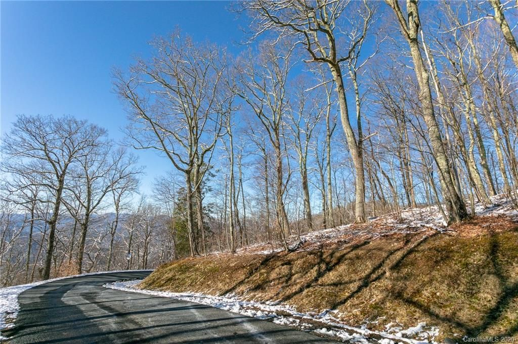 Lot 17 Old Growth Forest Road