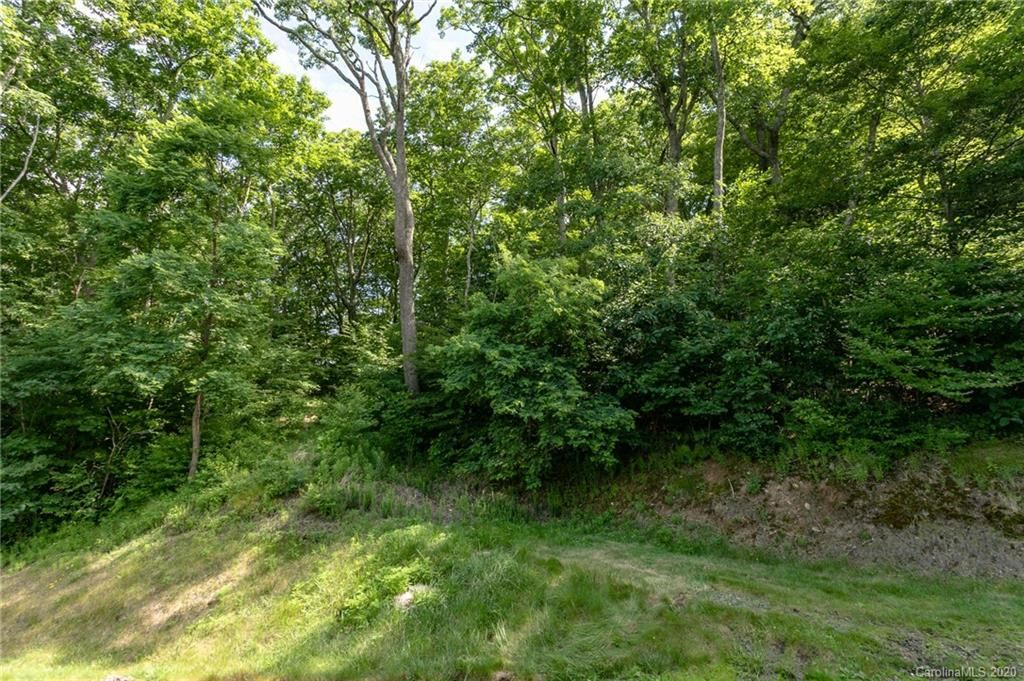 Lot 18 Old Growth Forest Road