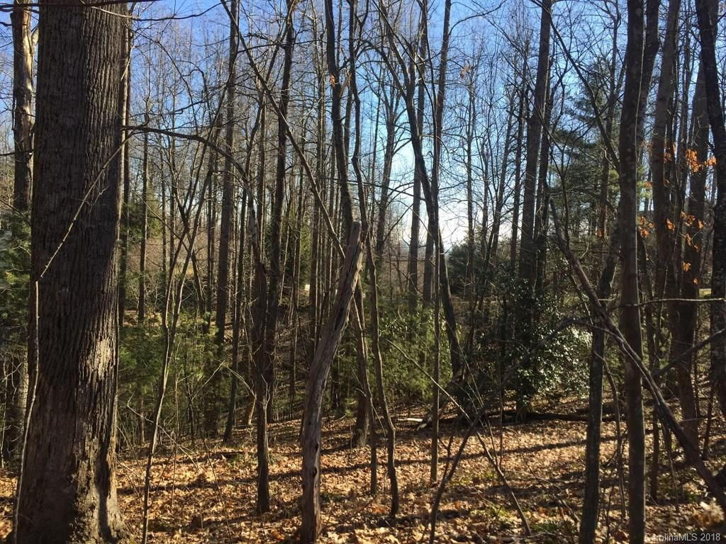 74 Poplar Forest Trace