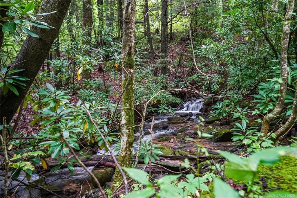 2.89 Acres Lady Slipper Trail