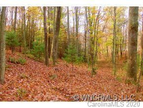 12 Wood Lily Trail