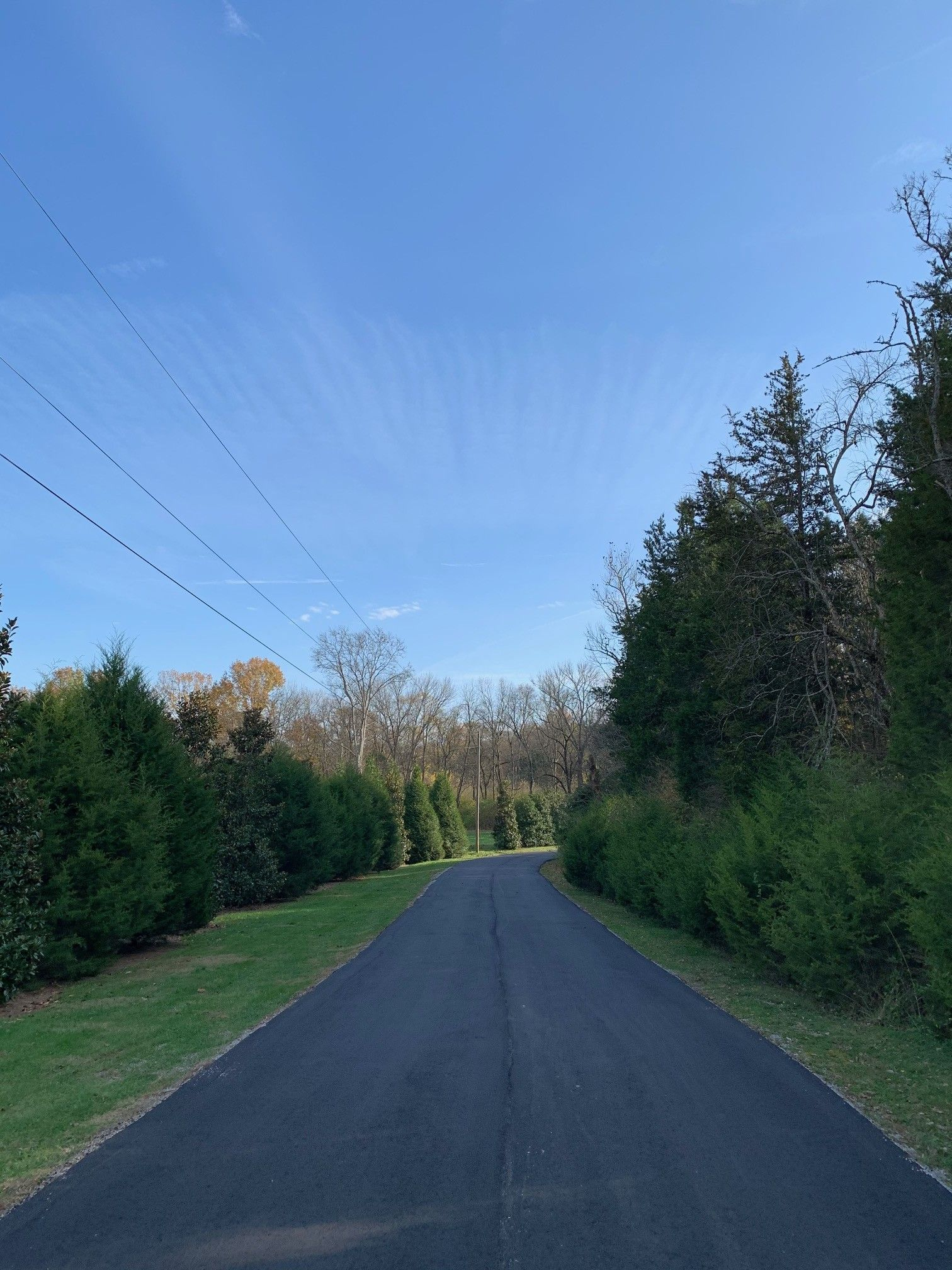 3601 Leipers Valley Trl