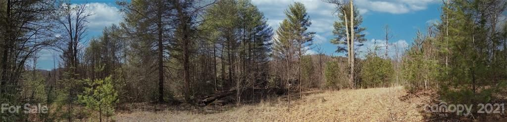 Lot 13a Moonshiners Trail