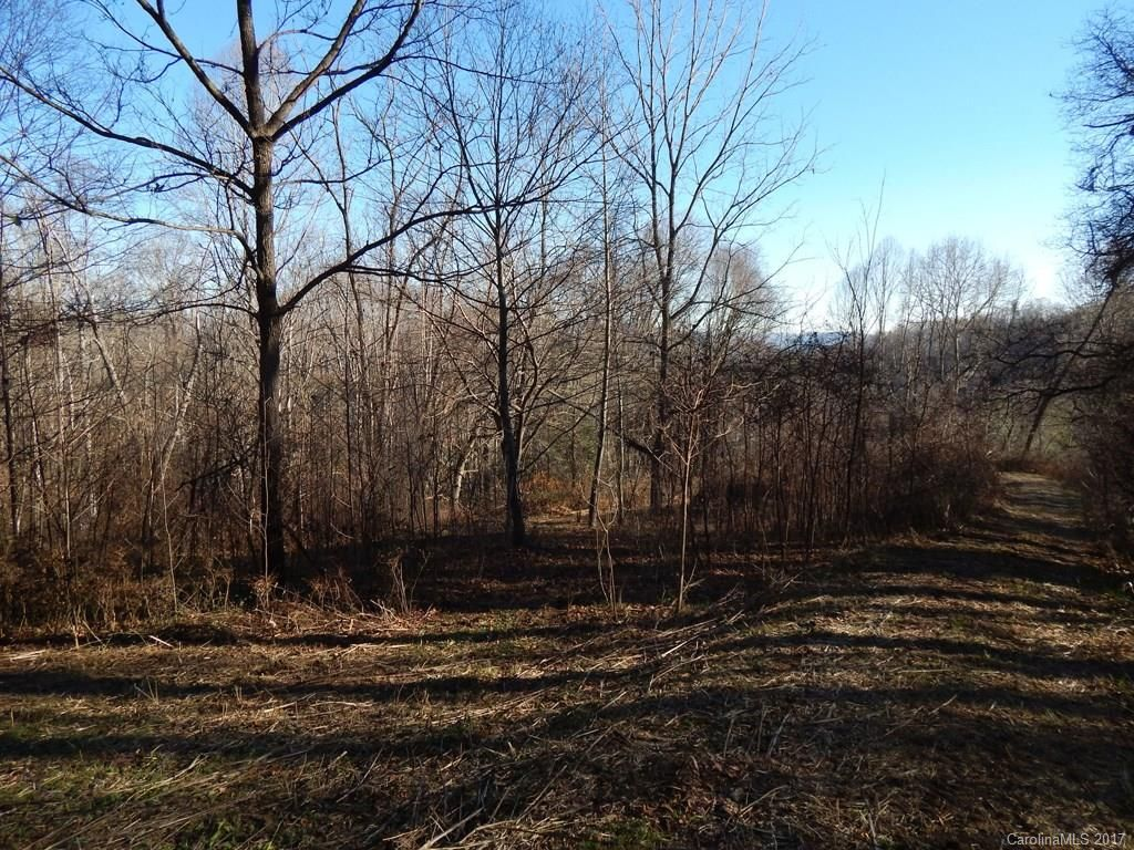 Lot 11 Coyote Hollow Road